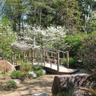 Picture - Footbridge in Sayen Gardens, Hamilton, New Jersey.