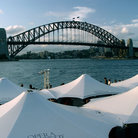 Picture - Sydney Harbour Bridge and umbrellas.