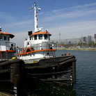 Picture - Tugboats and Harbourfront in Toronto.