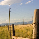 Picture - Fence in a farmers field, Helena, Montana.