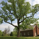 Picture - Rural Pioneer church in Hermitage, Tennessee.