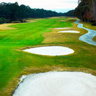 Picture - Sand dune on Hilton Head golf course.