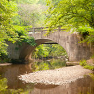 Picture - An old bridge in Hot Springs National Park.