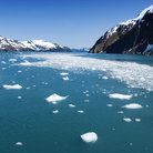 Picture - Hubbard Glacier in Seward.