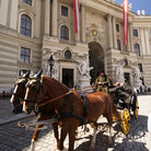 Picture - Horse and carriage outside Hofburg Palace, Vienna.