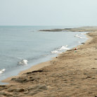 Picture - Shore of Indiana Dunes National Lakeshore.