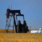 Picture - Oil Pump in wheat fiels near Iola, Kansas.