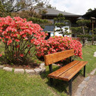 Picture - A bench and flowers at the Japanese Garden in Buenos Aires.