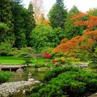 Picture - A view of the Japanese Garden of Seattle in the autumn.