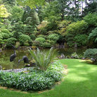 Picture - Pond in Japanese Garden, Portland, Oregon.
