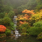 Picture - The waterfall at Portland's Japanese Garden.