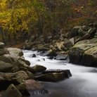 Picture - Stream in Rocks State Park, Maryland.