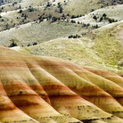Picture - The rolling hills of John Day National Monument.