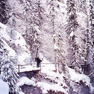 Picture - A view of Johnston Canyon in Banff National Park after a heavy snow fall in mid winter.