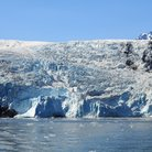 Picture - A glacier meets the water at Kenai Fjords National Park.