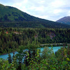 Picture - Turquoise waters of the Kenai River.
