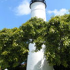 Picture - The black and white lighthouse at Key West.