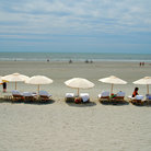 Picture - Beach umbrellas at Kiawah.