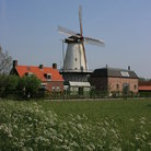 Picture - Homes in front of a windmill in Kinderdijk.
