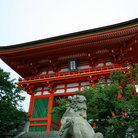 Picture - Red and green of the Kiyomizu temple in Kyoto.