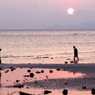 Picture - People on a beach at low tide on Koh Samui.