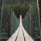 Picture - View across a swing bridge at Kootenai Falls.
