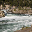 Picture - White water of Kootenai Falls.