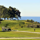 Picture - View of the Torey Pines Golf Course with the ocean behind.