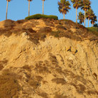 Picture - Palm Cliff in Laguna Beach.