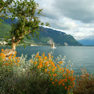 Picture - Lake Geneva.