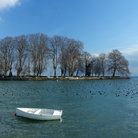 Picture - The Isle de la Harpe, on Lake Geneva.