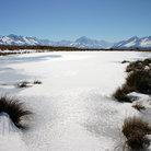 Picture - Frozen landscape on the Pukaki trek.