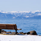 Picture - Park bench on Lake Tahoe.