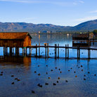 Picture - Docks on Lake Tahoe, Nevada.