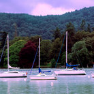 Picture - Sailboats on Lake Windermere in the Lake District.