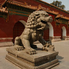 Picture - Male lion statue in front of the Lama Temple in Beijing.