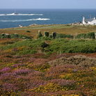 Picture - Land's End.