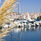 Picture - Cap d'Agde in the Languedoc Region.