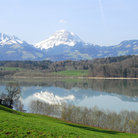 Picture - Lake of Gruyere and the snowy top of Mount Moleson.