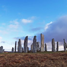 Picture - View of the Standing Stones at Callinish, Lewis.