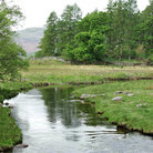 Picture - The River Brathay at Little Langdale.