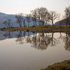 Picture - Calm waters of Loch Awe.