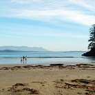 Picture - The beautiful Long Beach at Tofino.