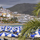 Picture - Beach umbrellas and the town of Los Cristianos.