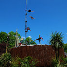 Picture - High Dive Show at Loudoun Castle Theme Park.