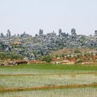 Picture - Rice paddies nestled among the limestone pillars in the stone forest.