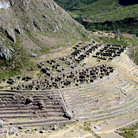 Picture - Terraces as seen from the Inca Trail.