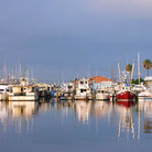 Picture - Fishing boats in the harbour at Madeira Beach.l.