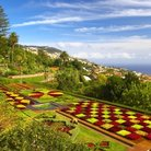 Picture - Madeira Botanical Garden in Funchal.