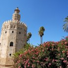 Picture - Torre del Oro (Golden Tower) in Seville.